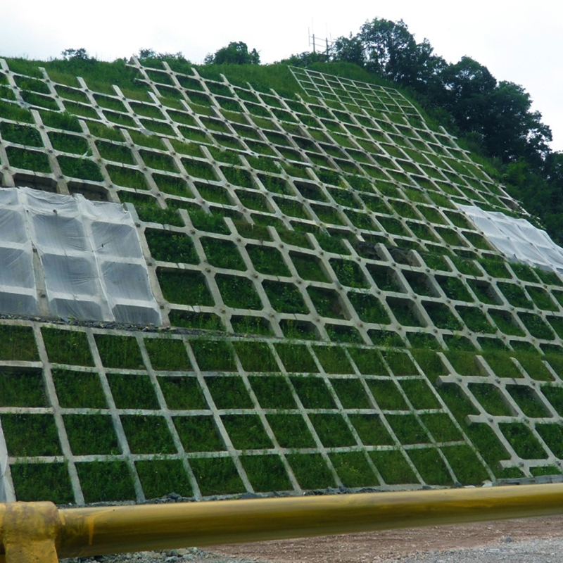 杭瑞高速大思段(2012.03~2014.10)绿化效果