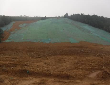 治理Ⅱ区种植土续坡回填后效果